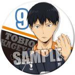 Haikyu!! - Tobio Kageyama Can Mirror