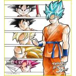 "Dragon Ball - ""Ichiban Kuji - Anime 30th Anniversary"" Shikishi Art Print (Last One)"